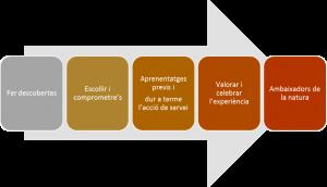 grafic-5