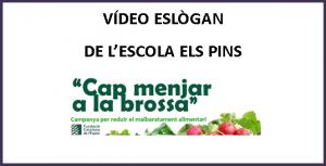 Imagen VIDEO ESCOLA ELS PINS