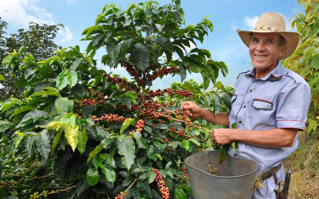 Con asesoría personalizada Microempresas de Colombia busca fortalecer los pequeños productores y agremiaciones en el país