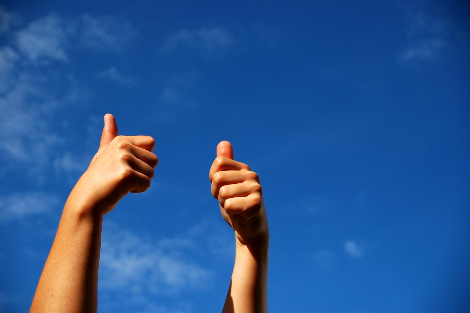 El optimista encuentra una respuesta para cada problema, el pesimista ve un problema en cada respuesta. Molt bon 2013!